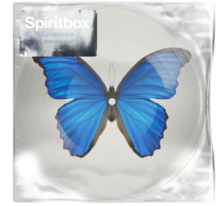 Spiritbox